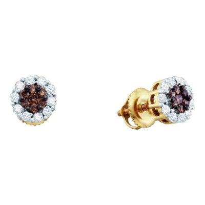 14kt Yellow Gold Womens Round Brown Diamond Flower Cluster Earrings 1/2 Cttw
