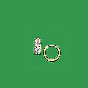 10Kt Fancy CZ Earrings